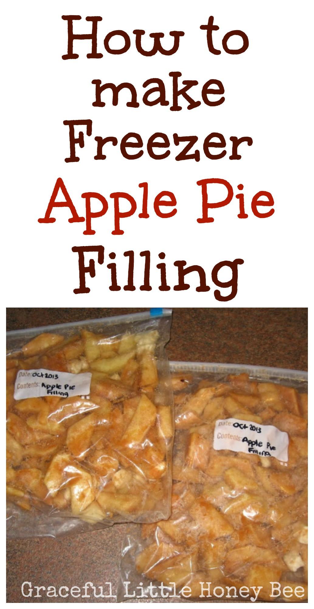 Organic Apple Pie Filling  Freezer Apple Pie Filling Video Tutorial Graceful