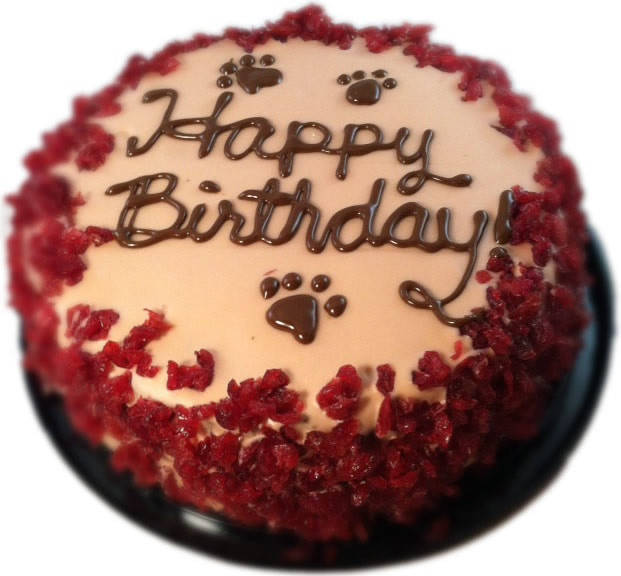 Organic Birthday Cake  Organic Birthday Cake for Dogs Plus Treats