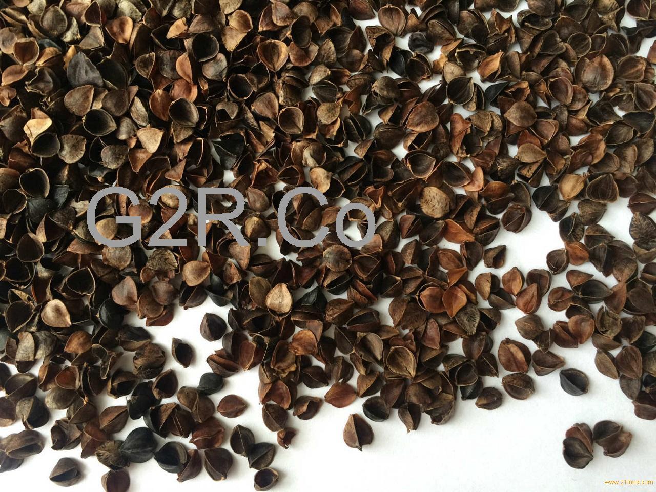 Organic Buckwheat Hulls  Organic Buckwheat hulls products Russia Organic Buckwheat
