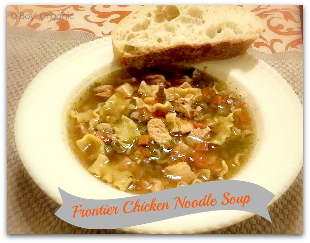 Organic Chicken Noodle Soup  Frontier Soups MomsMeet Review