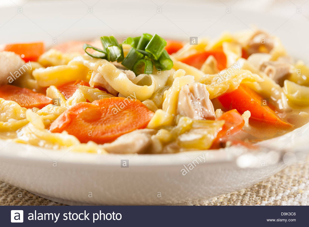 Organic Chicken Noodle Soup  Homemade Organic Chicken Noodle Soup with celery and