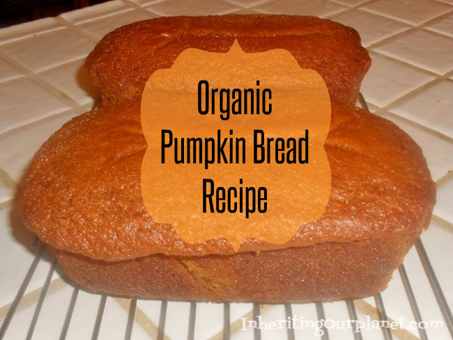 Organic Pumpkin Bread  Organic Pumpkin Bread Recipe Inheriting Our Planet