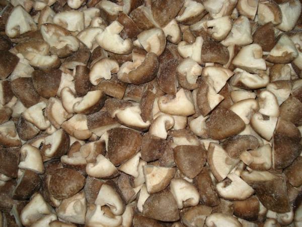 Organic Shiitake Mushrooms  Cheap Fresh organic Shiitake Mushroom of shettyxie
