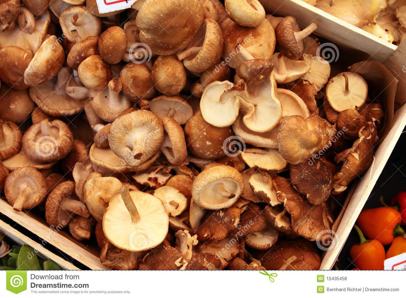 Organic Shiitake Mushrooms  Organic Shiitake Mushrooms Royalty Free Stock s
