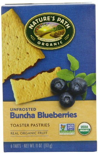 Organic Toaster Pastries  Nature s Path Organic Toaster Pastries Blueberry 6 Count