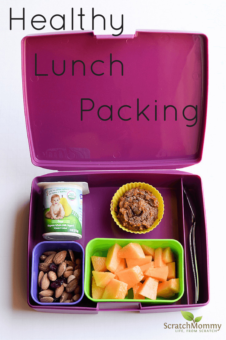 Packing Healthy Lunches  Packing a Healthy Bento Box School Lunch