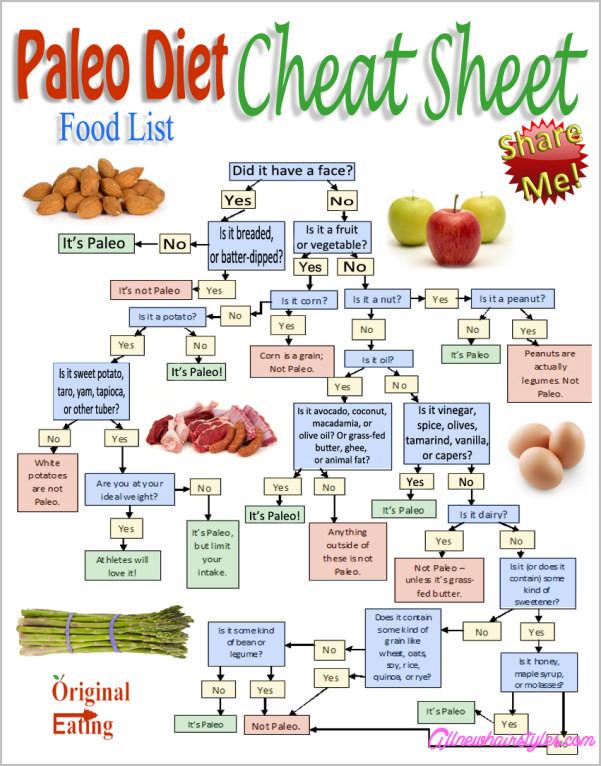 Paleo Diet Unhealthy  The Paleo Diet AllNewHairStyles
