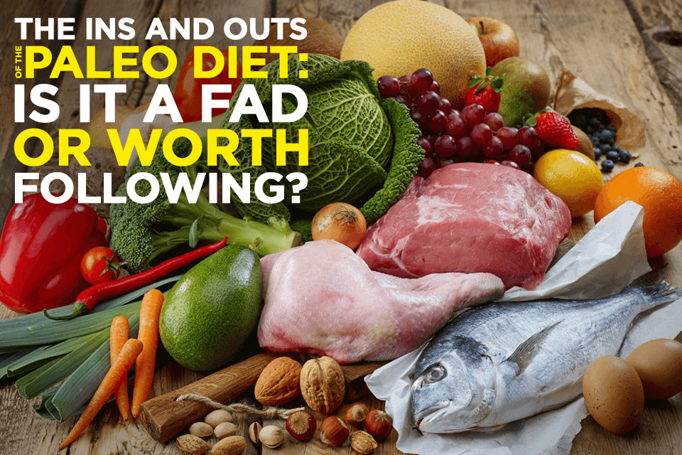 Paleo Diet Unhealthy  What Is the Paleo Diet A Beginner s Guide Is It All a Hype