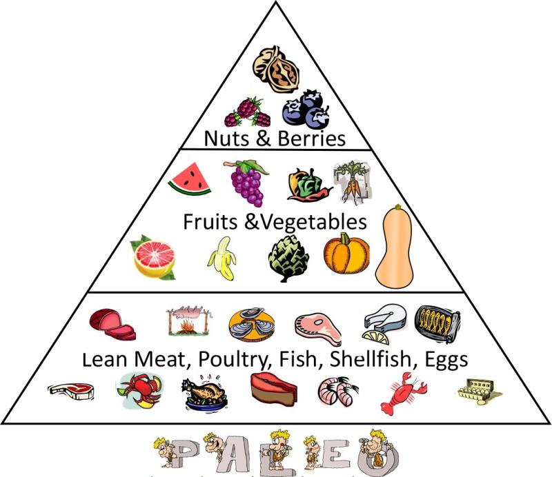 Paleo Diet Unhealthy  Strawberry Ruckus