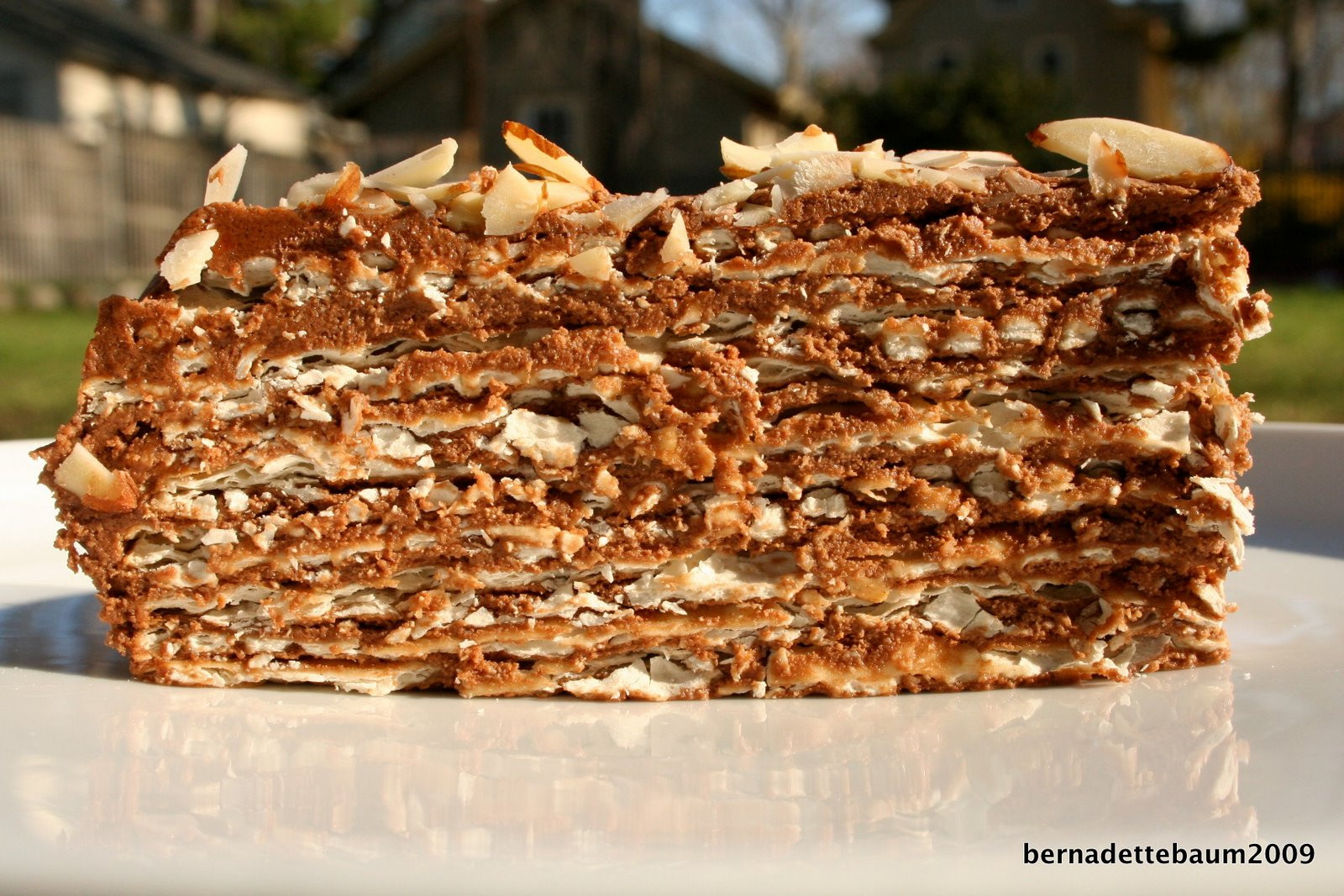 Passover Cake Recipes 20 Ideas for Passover Chocolate Layer Cake