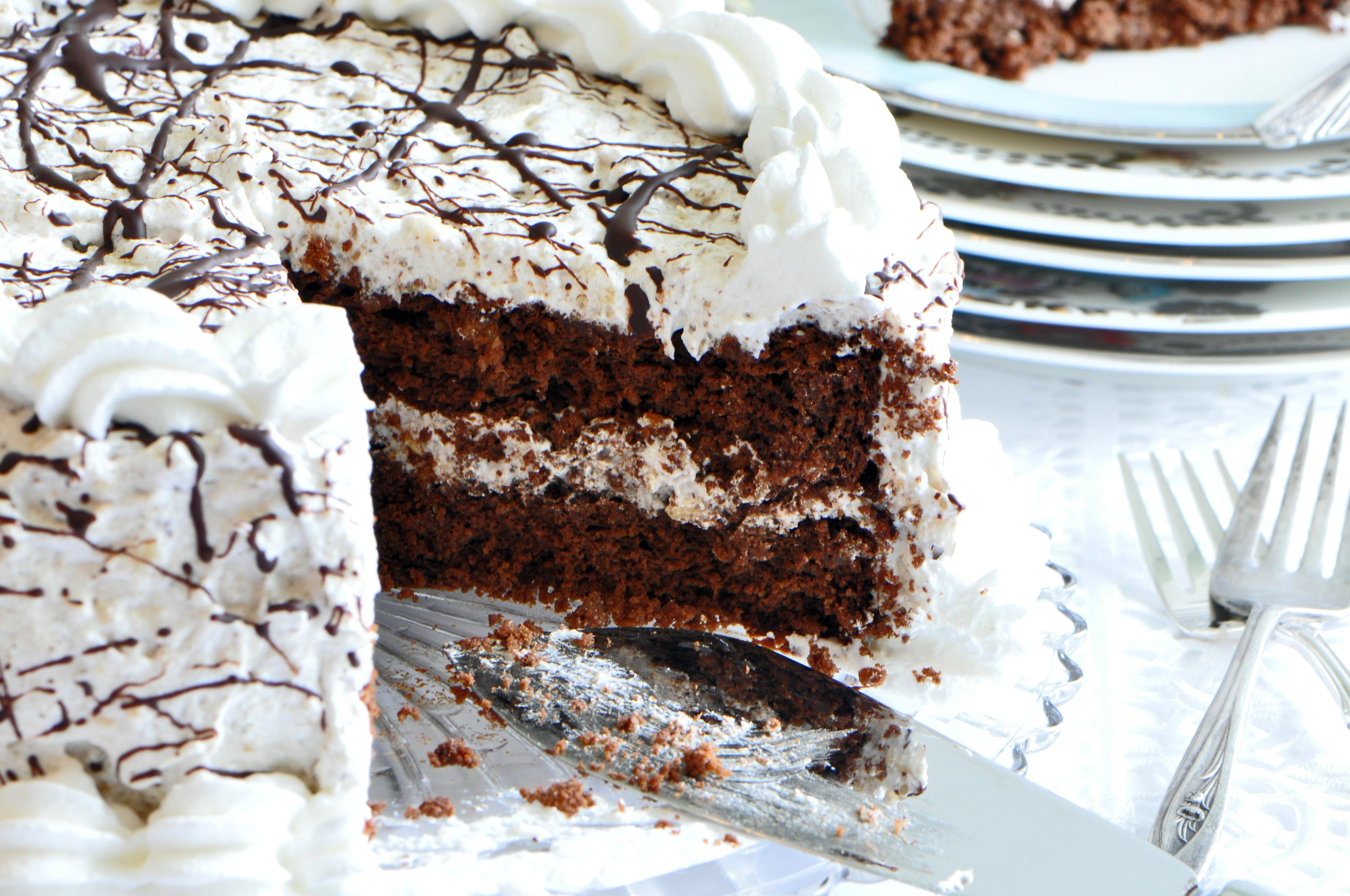 Passover Cake Recipes  Passover Dessert Chocolate Noisette Layer Cake Recipe