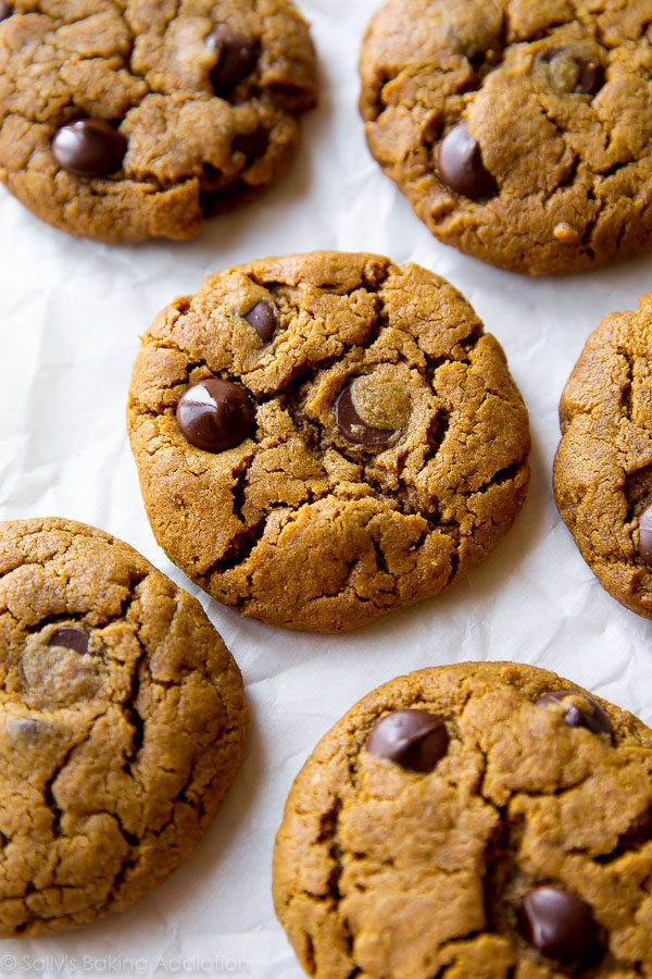 Passover Cookies Recipe  almond butter chocolate chip cookies passover
