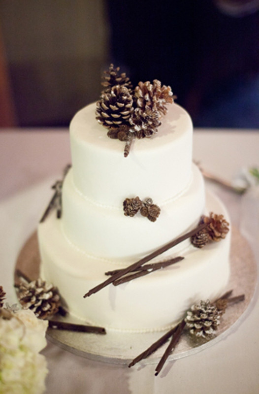 Pine Cone Wedding Cakes  Picture Amazing Cakes For Your Winter Wedding