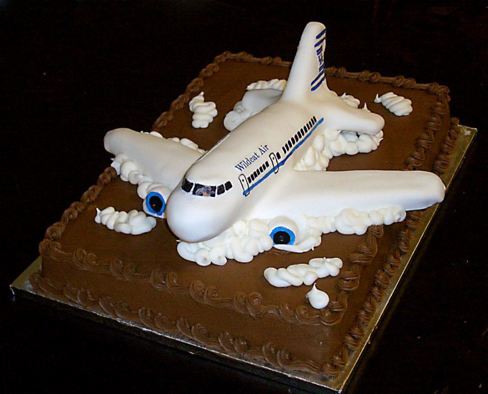 Plane Wedding Cakes  Airplane groom s cake Totally should have done for my