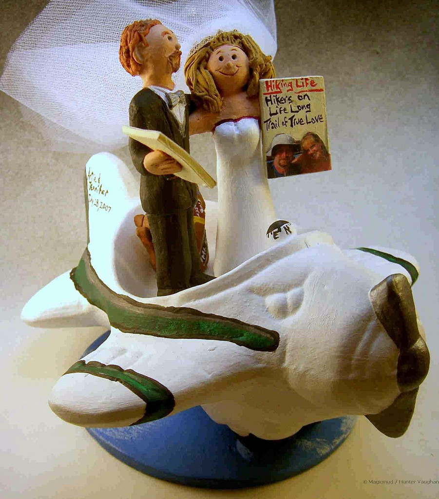 Plane Wedding Cakes  Airplane Themed Wedding Cake Topper