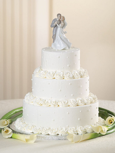 Publix Wedding Cakes  PUBLIX WEDDING CAKES PUBLIX WEDDING AJITH SHALINI