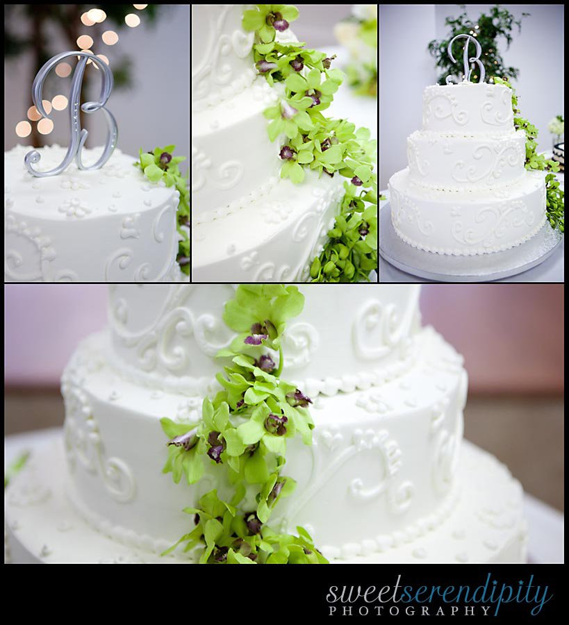 Publix Wedding Cakes Cost  How Much Do Publix Wedding Cakes Cost Party XYZ