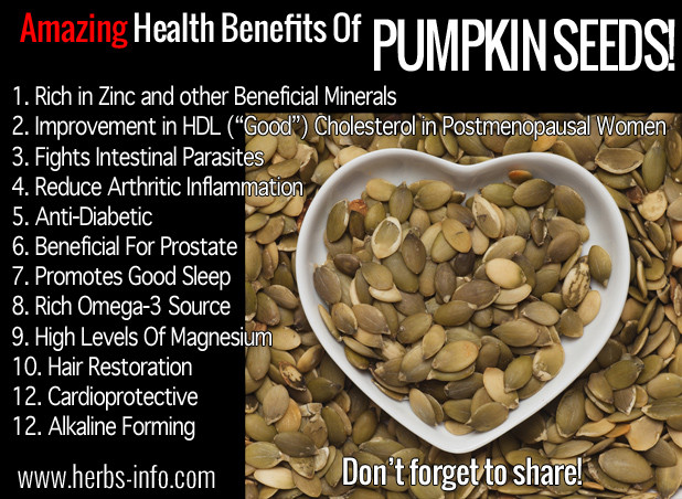 Pumpkin Seeds Healthy  Amazing Health Benefits Pumpkin Seeds Herbs Info