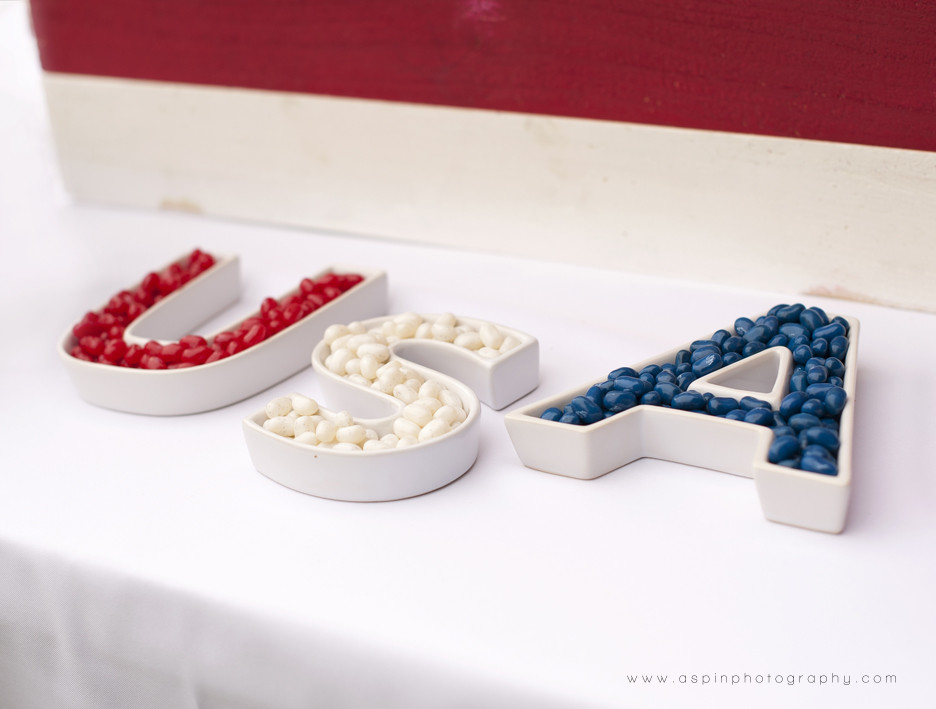 Quick And Easy Fourth Of July Desserts  A Quick & Easy 4th of July Dessert Table