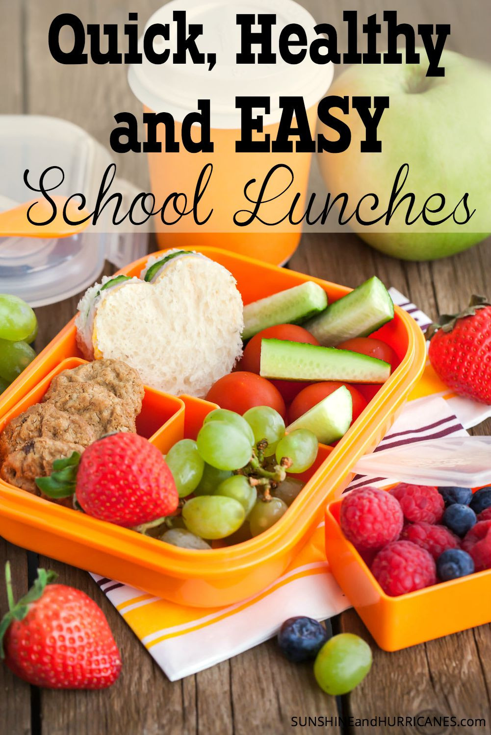 Quick And Easy Healthy Lunches  Healthy Quick and Easy School Lunches