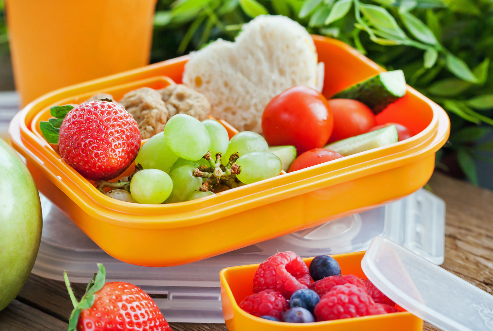 Quick And Healthy Lunches  5 Quick and Healthy Preschool Lunches