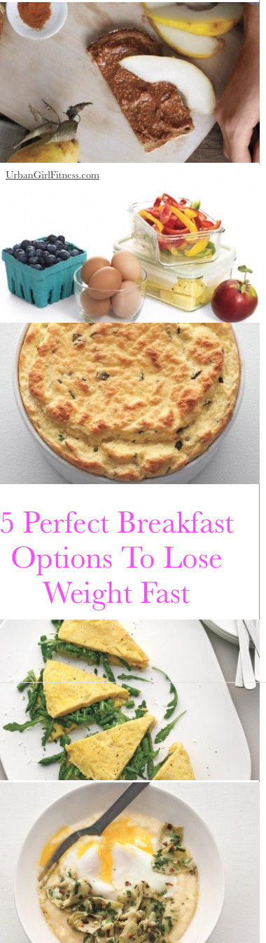Quick Healthy Breakfast For Weight Loss  perfect breakfast to lose weight
