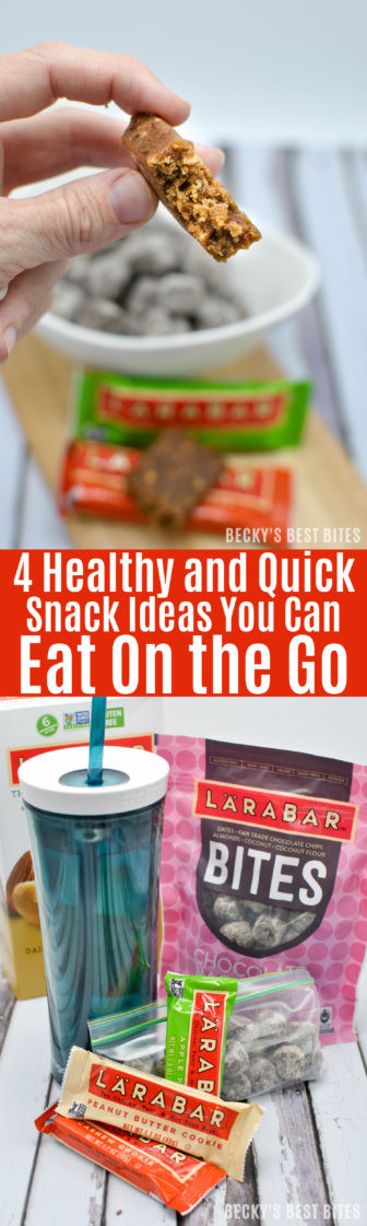 Quick Healthy Snacks On The Go  4 Healthy and Quick Snack Ideas You Can Eat the Go