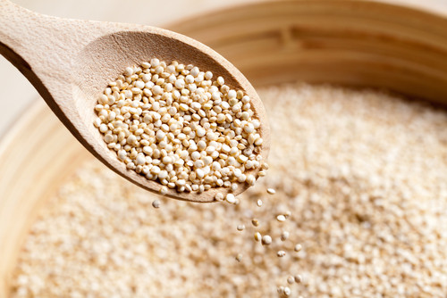 Quinoa Kosher For Passover  Jewcy