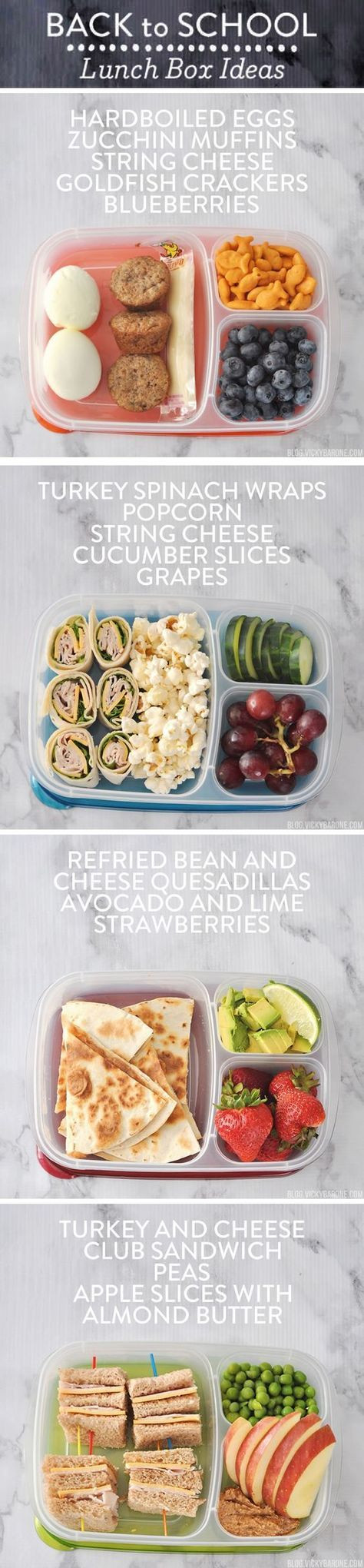 Reddit Healthy Snacks  1000 ideas about Cold School Lunches on Pinterest