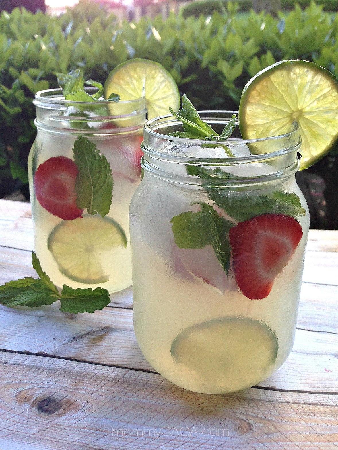 Refreshing Summer Vodka Drinks  Refreshing Summer Drinks Vodka Mint Lemonade Cocktail