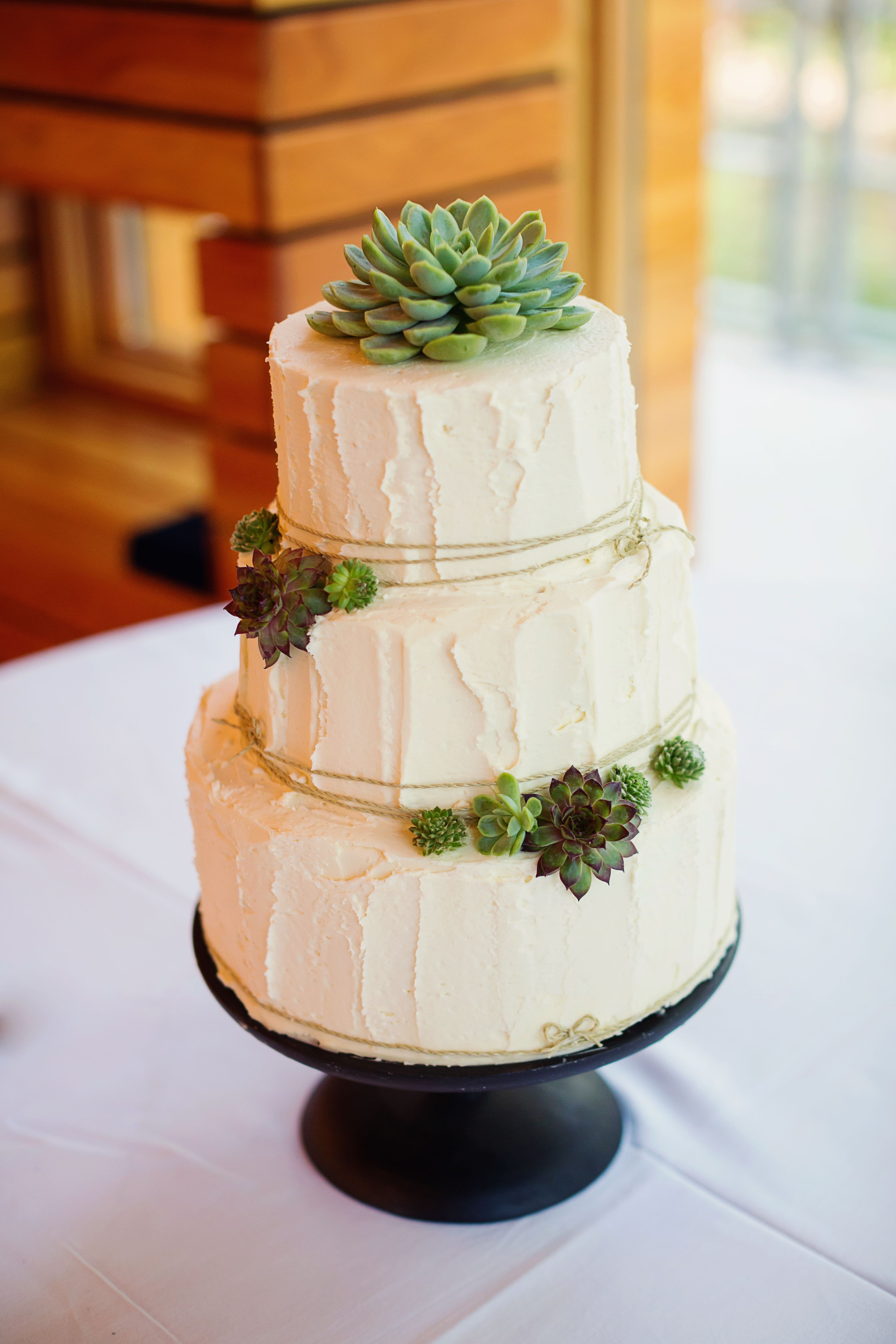 Rustic Buttercream Wedding Cakes  Buttercream Wedding Cake with Succulent Detail