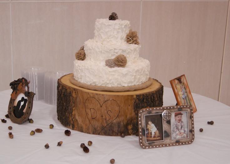 Rustic Wedding Shower Cakes  Rustic wedding shower cake with tree stump cake base