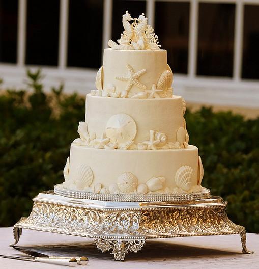 Seashell Wedding Cakes  seashell wedding cakes