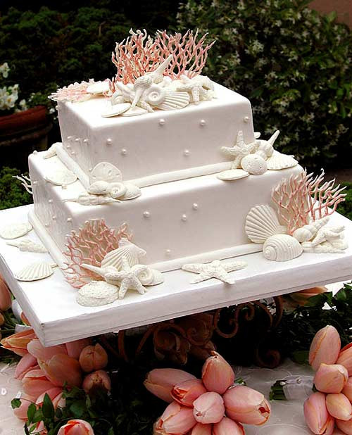 Simple Beach Wedding Cakes  Concertina Press Stationery and Invitations 5 Seashell
