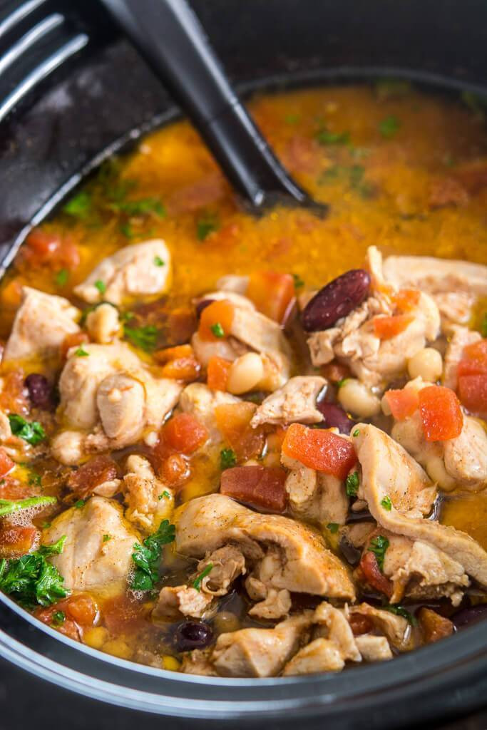 Slow Cooker Chicken Stew Recipes Healthy  Slow Cooker Spicy Chicken Stew Slow Cooker Gourmet