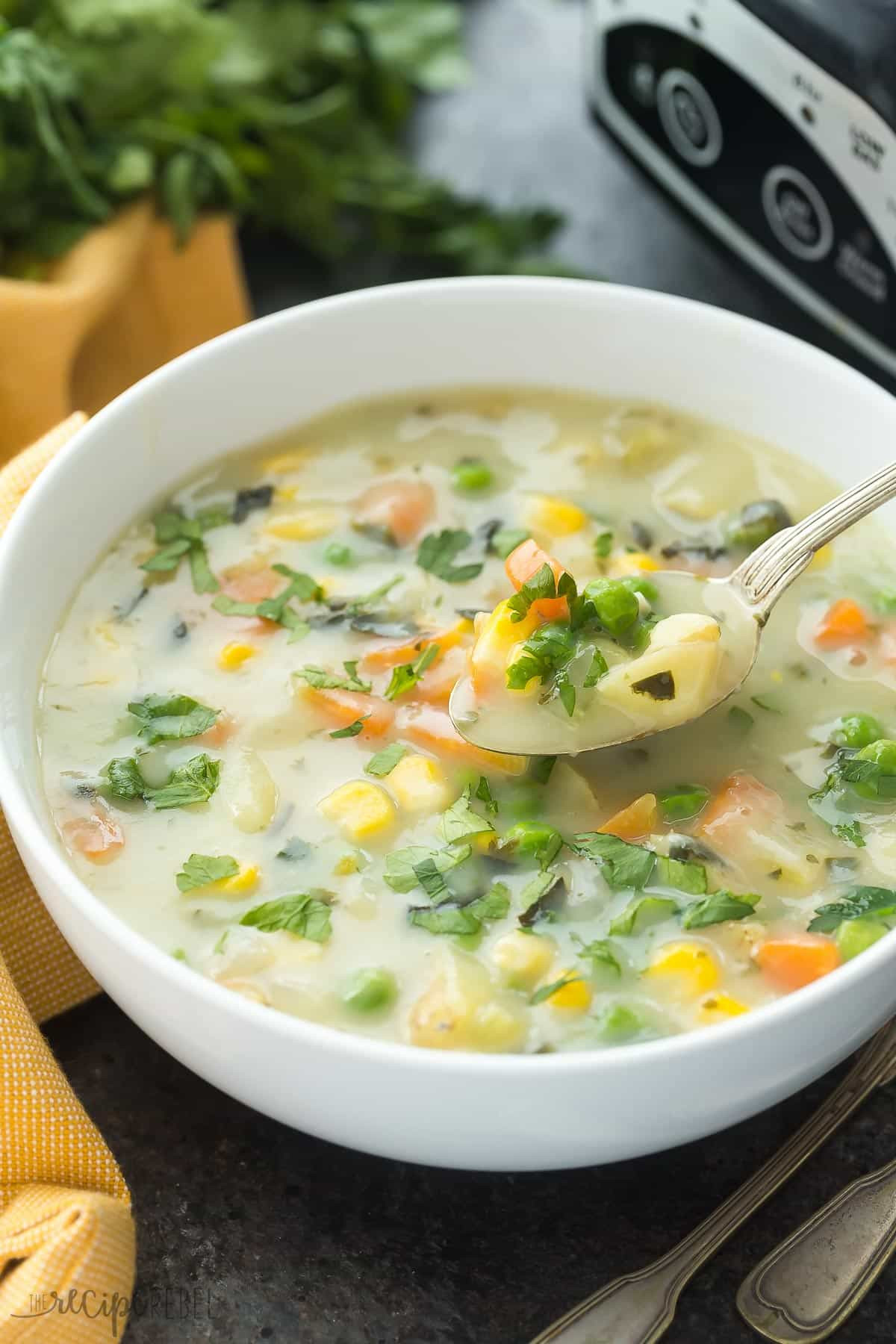 Slow Cooker Vegetable Soup Recipes Healthy  Slow Cooker Creamy Ve able Soup with RECIPE VIDEO