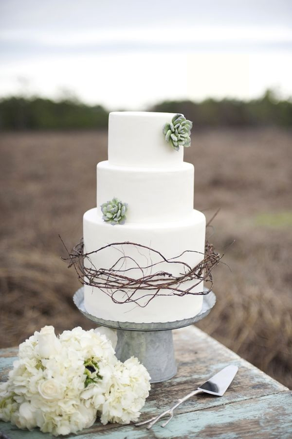 Succulent Wedding Cakes  Cakes with Succulents Flowers Such a Sweet Idea