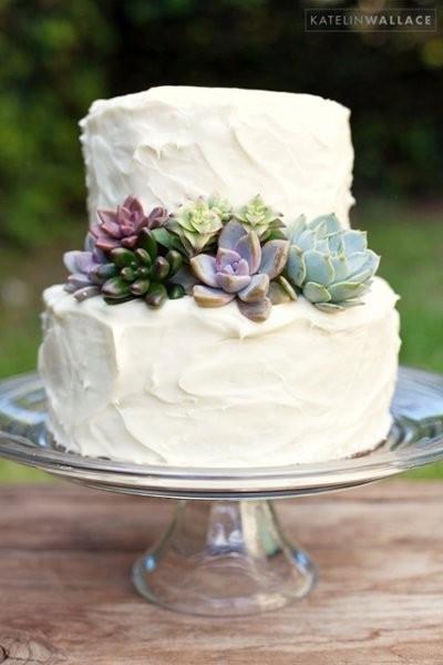 Succulent Wedding Cakes  Succulent Cuttings for Cake Decorating