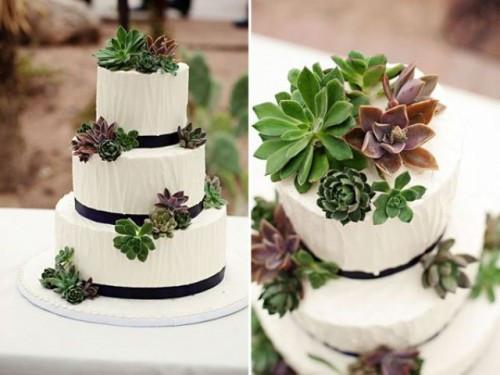 Succulent Wedding Cakes  Succulent Wedding Cakes A Hot Wedding Trend crazyforus
