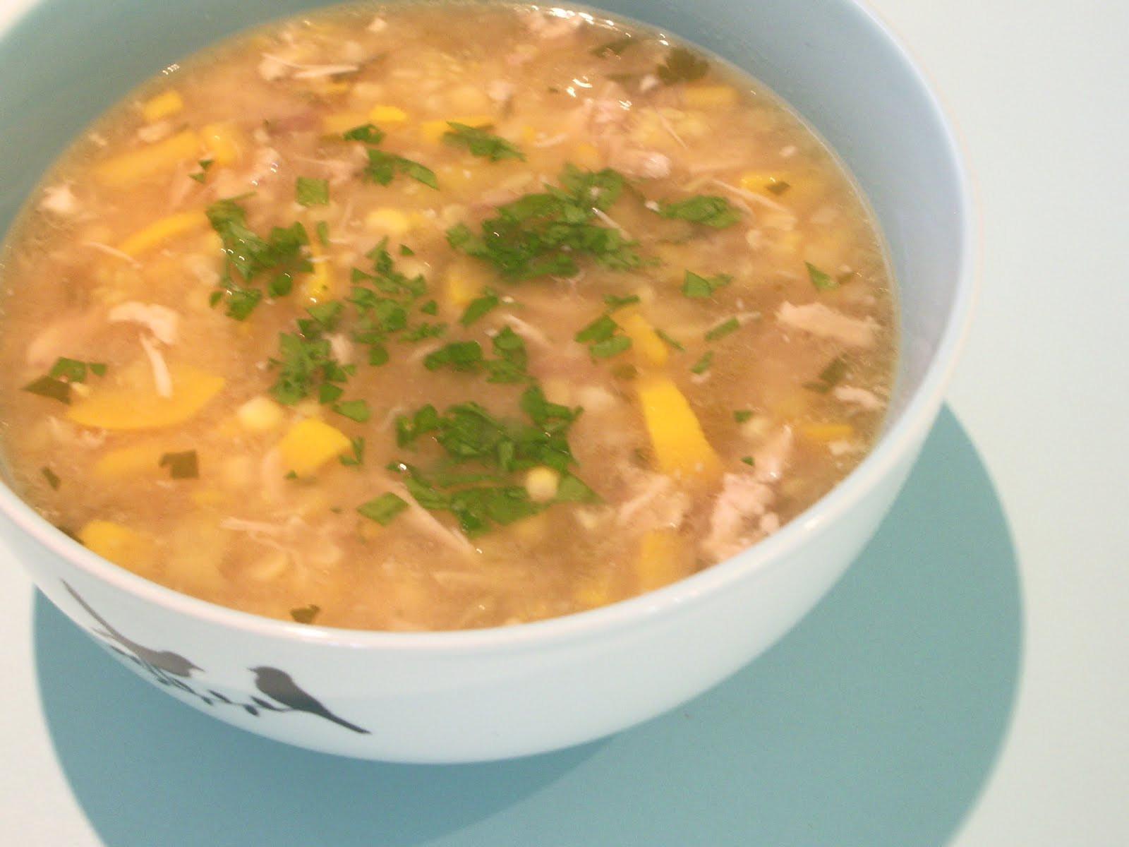 Summer Chicken Soup  little woollie summer chicken soup