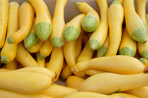 Summer Squash Nutrition  Health Benefits of Summer Squash