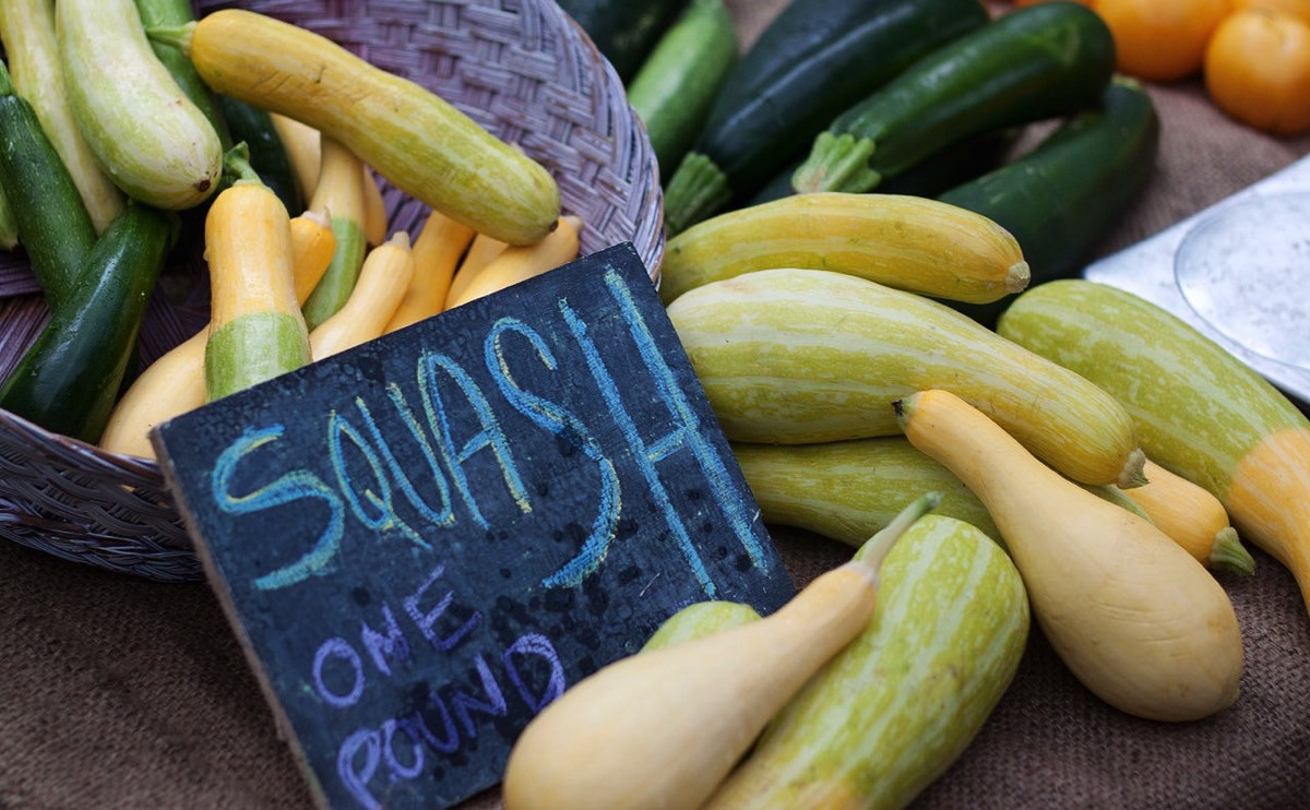 Summer Squash Varieties  10 Summer Squash Varieties Some You Know Some You Don t