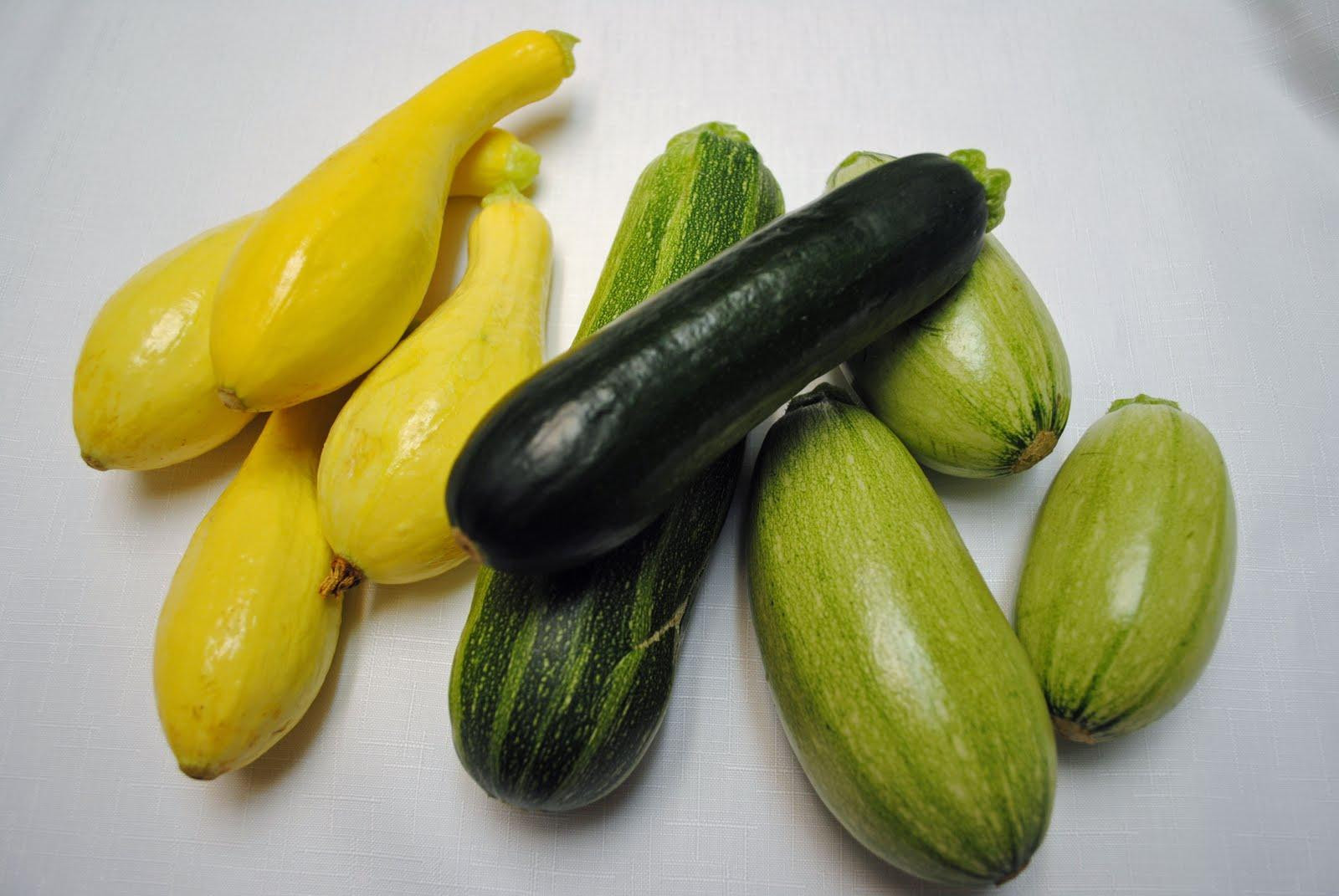 Summer Squash Varieties  Produce Information Organized by Plant Part