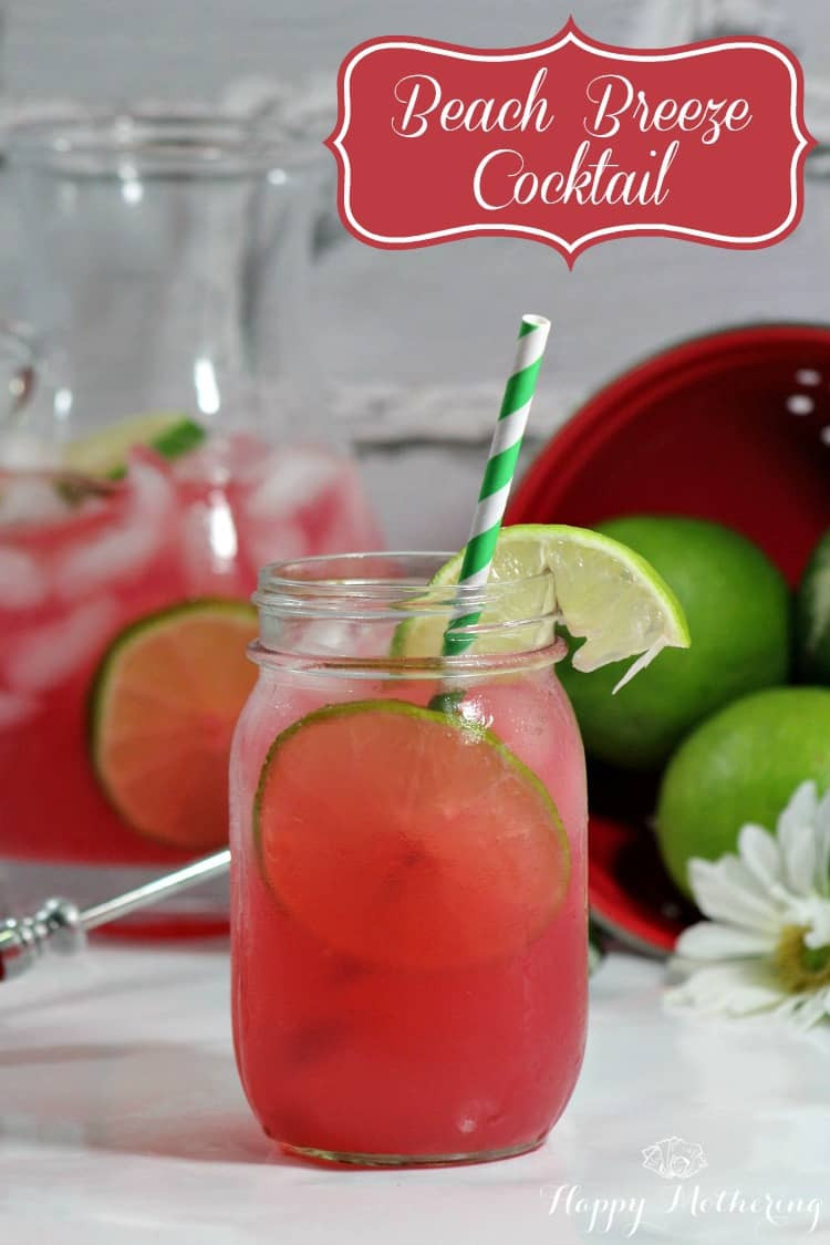 Summertime Vodka Drinks  Summer Cocktail Recipes Beach Breeze Happy Mothering