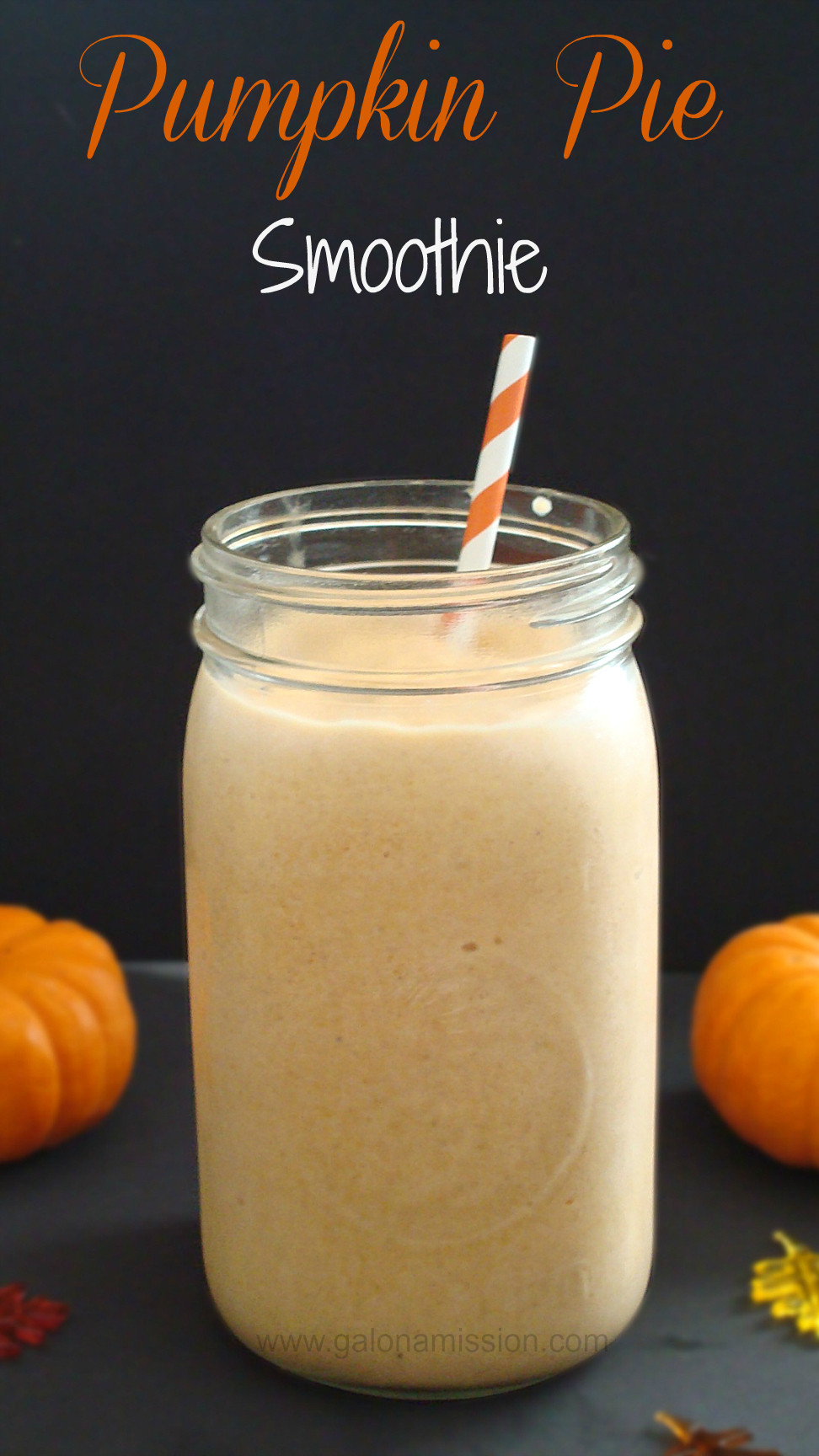Trim Healthy Mama Smoothies  Pumpkin Pie Smoothie Sugar & Dairy Free Gal on a Mission