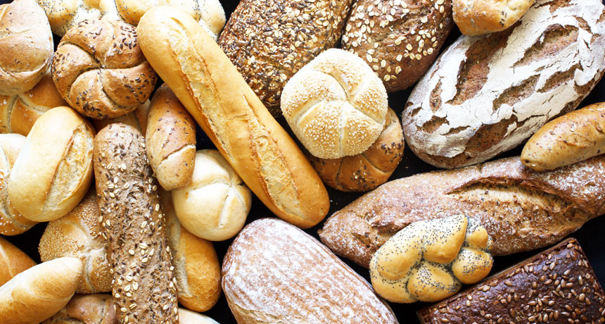 Types Of Healthy Bread  Choosing white or whole grain bread may depend on what
