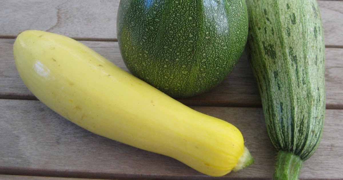 Types Of Summer Squash  The Delicious Truth How Summer Squash Grow