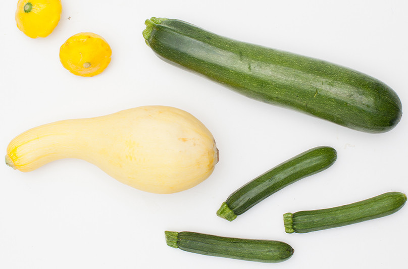 Types Of Summer Squash  6 Types of Summer Squash
