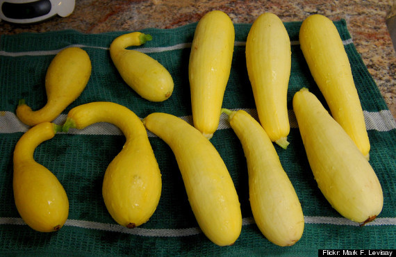 Types Of Summer Squash  Summer Squash Guide What s What And How To Cook Them