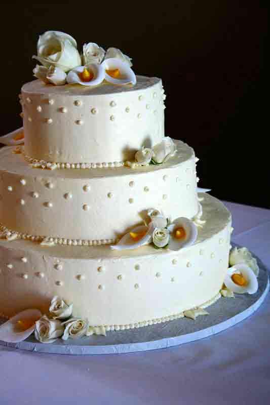 Vegan Wedding Cakes  How to Have a Vegan Wedding Our Organic Wedding
